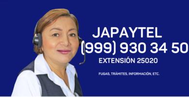 Cómo Consultar Recibo De Japay
