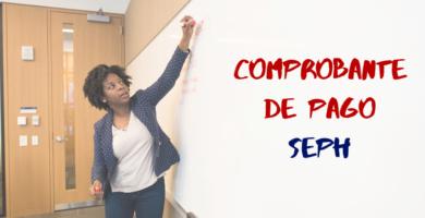 Consultar Talón De Pago De SEPH